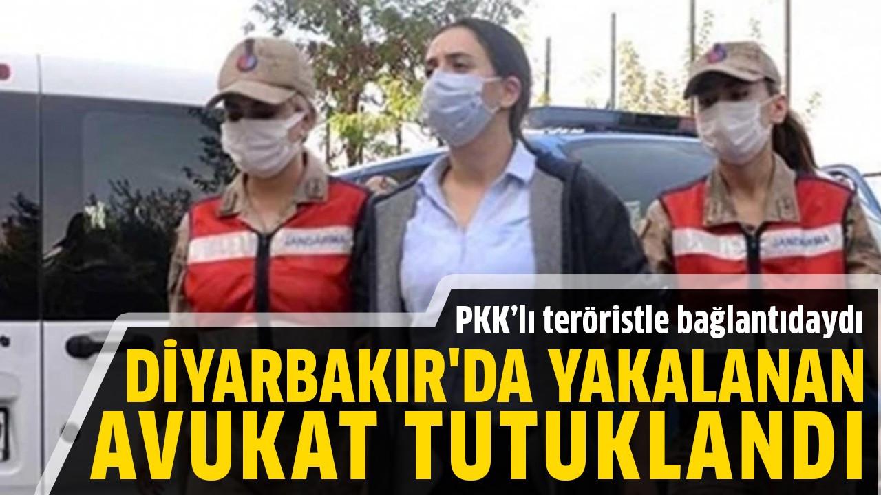 Diyarbakır'da yakalanan avukat tutuklandı