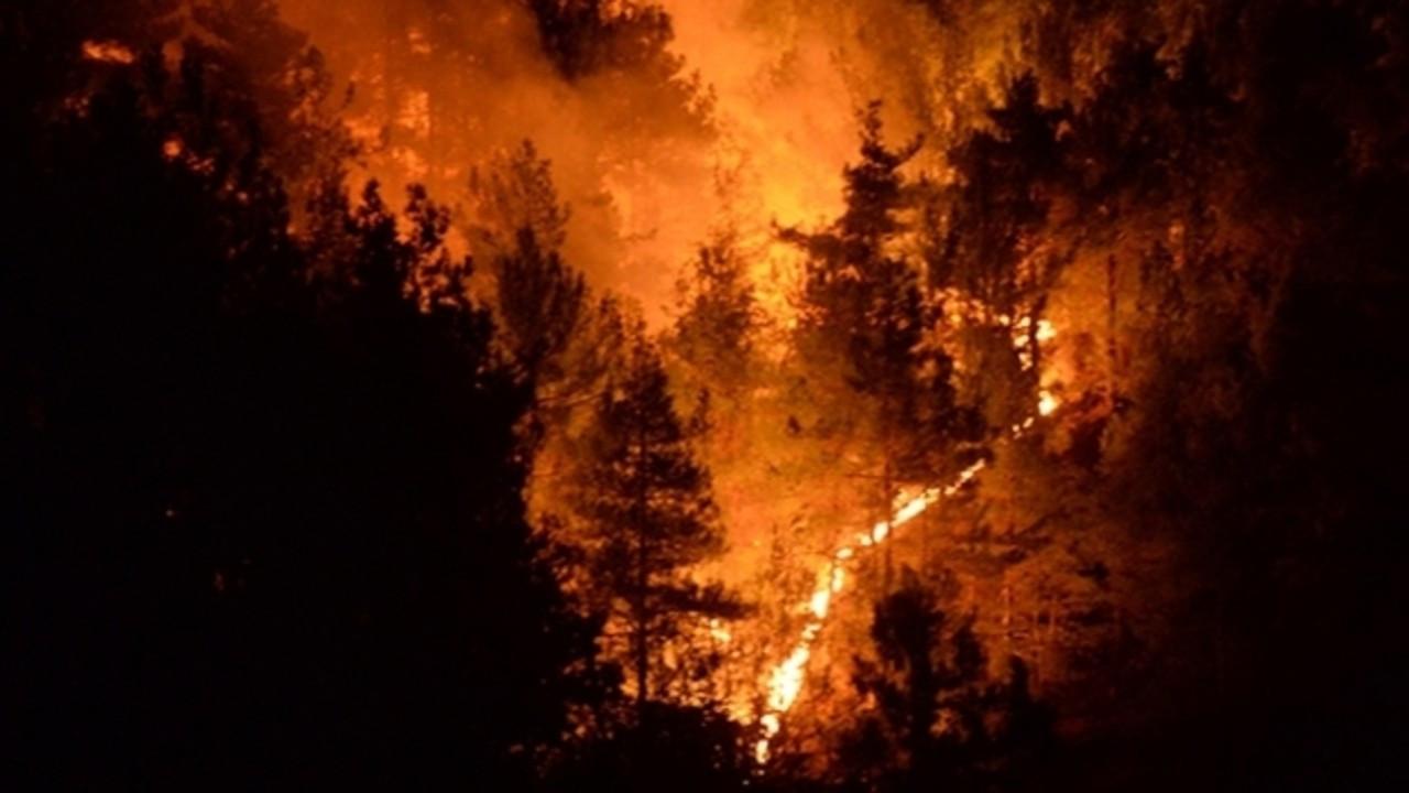 Yangınlar kontrol altında