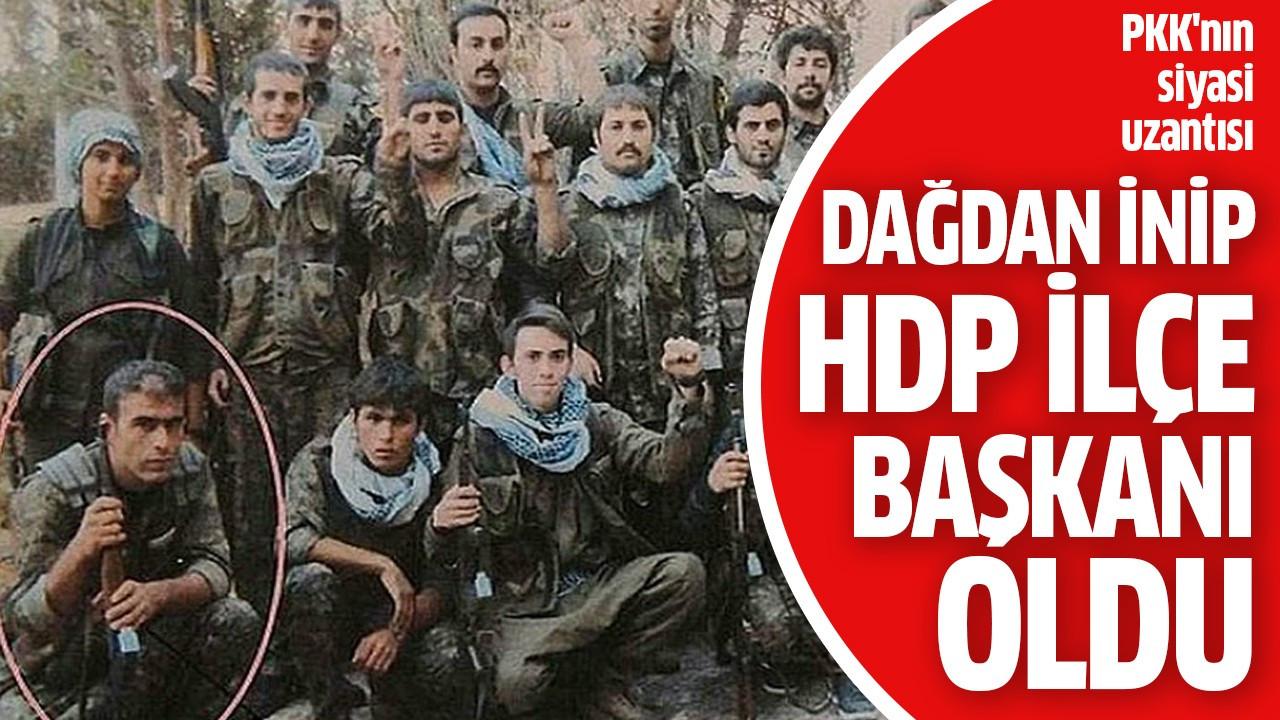 Dağdan inip HDP ilçe başkanı oldu
