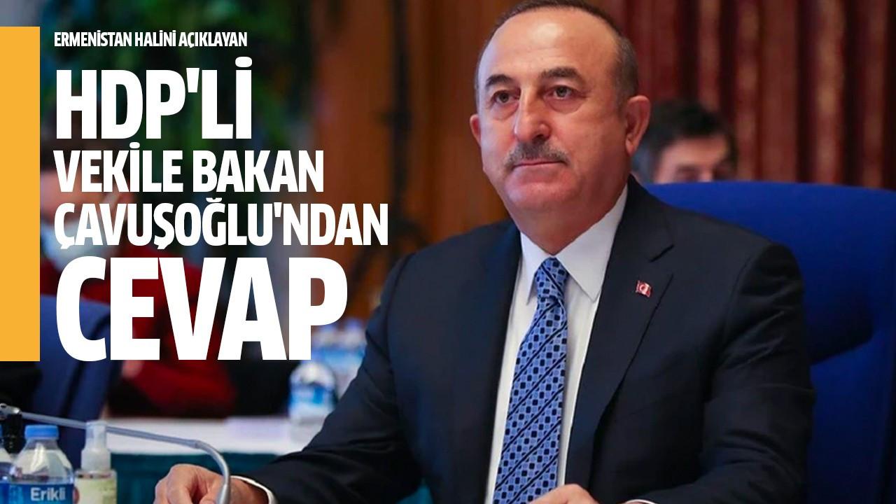 HDP'li vekile Bakan Çavuşoğlu'ndan cevap