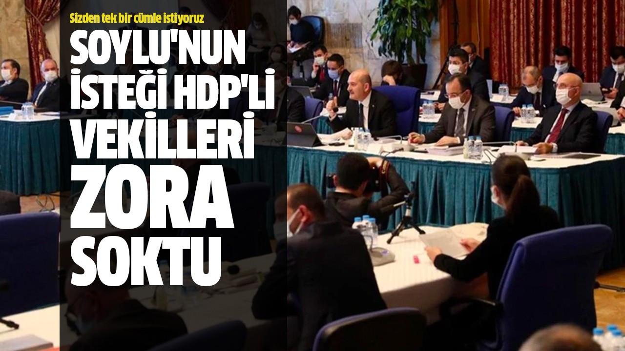 Soylu'nun isteği HDP'li vekilleri zora soktu