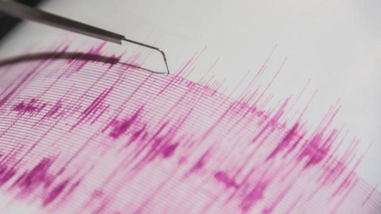 Yeni Zelanda'da 7,3 deprem