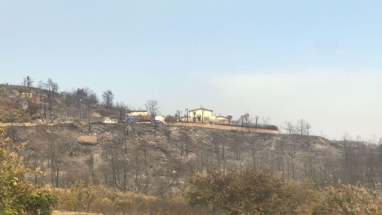 Manavgat'taki orman yangınında hasar gören evde çiftin cansız bedenleri bulundu