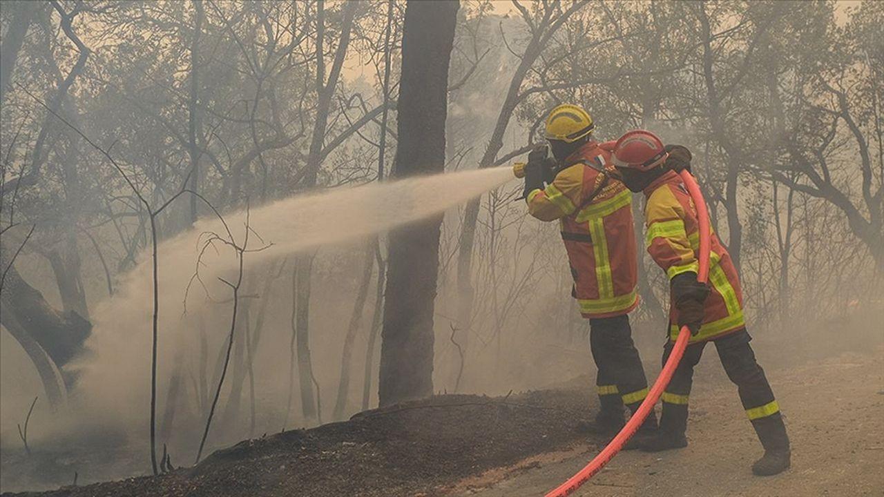 Fransa'da yangınlar 11 gün sonra söndürülebildi