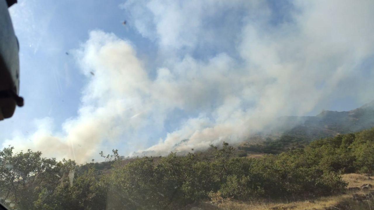 Bingöl'de çıkan yangına müdahale ediliyor