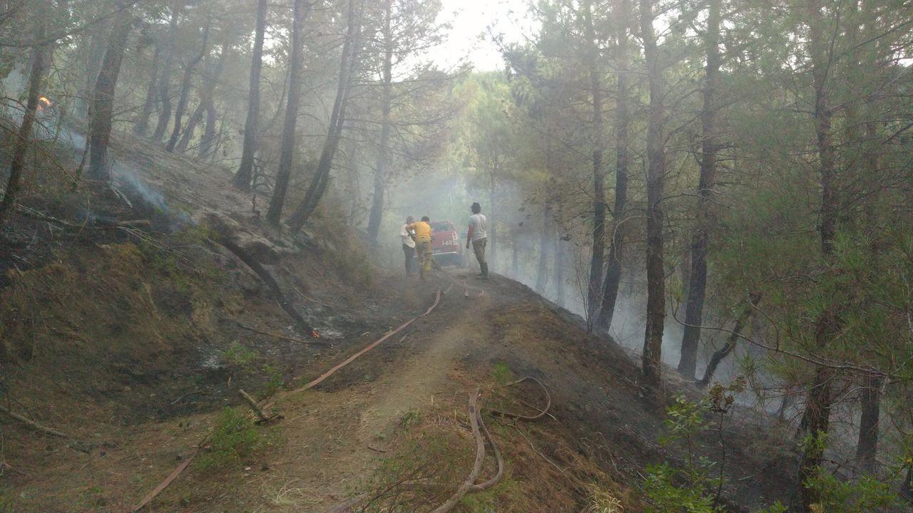 Balıkesir'deorman yangını kontrol altına alındı