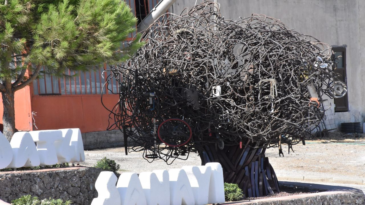 Datça'da Sanayi Ağacı heykeli tartışması