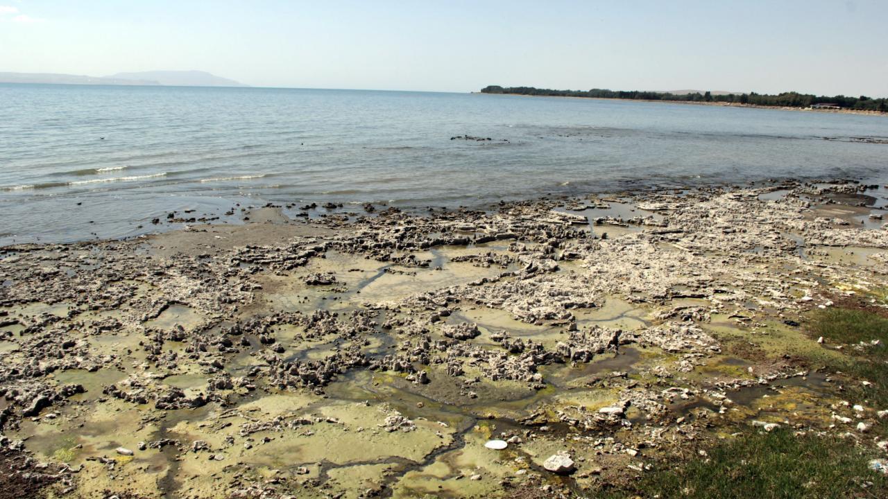Van Gölü'nde kuraklık tehlikesi