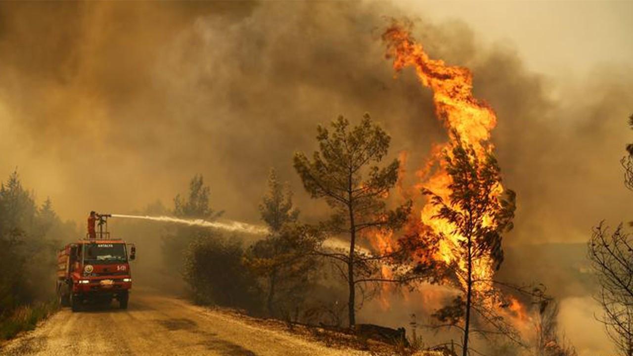 Hatay'daki orman yangınında 3 gözaltı!