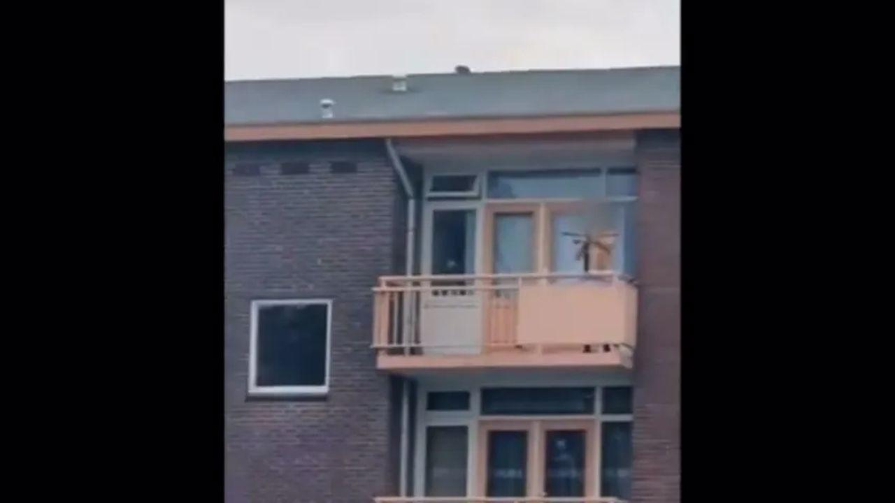 Hollanda'da bıçaklı saldırı: 2 kişi öldü