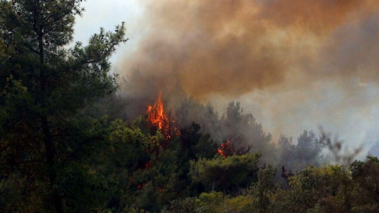 Teröristten orman yangınlarıyla ilgili itiraf