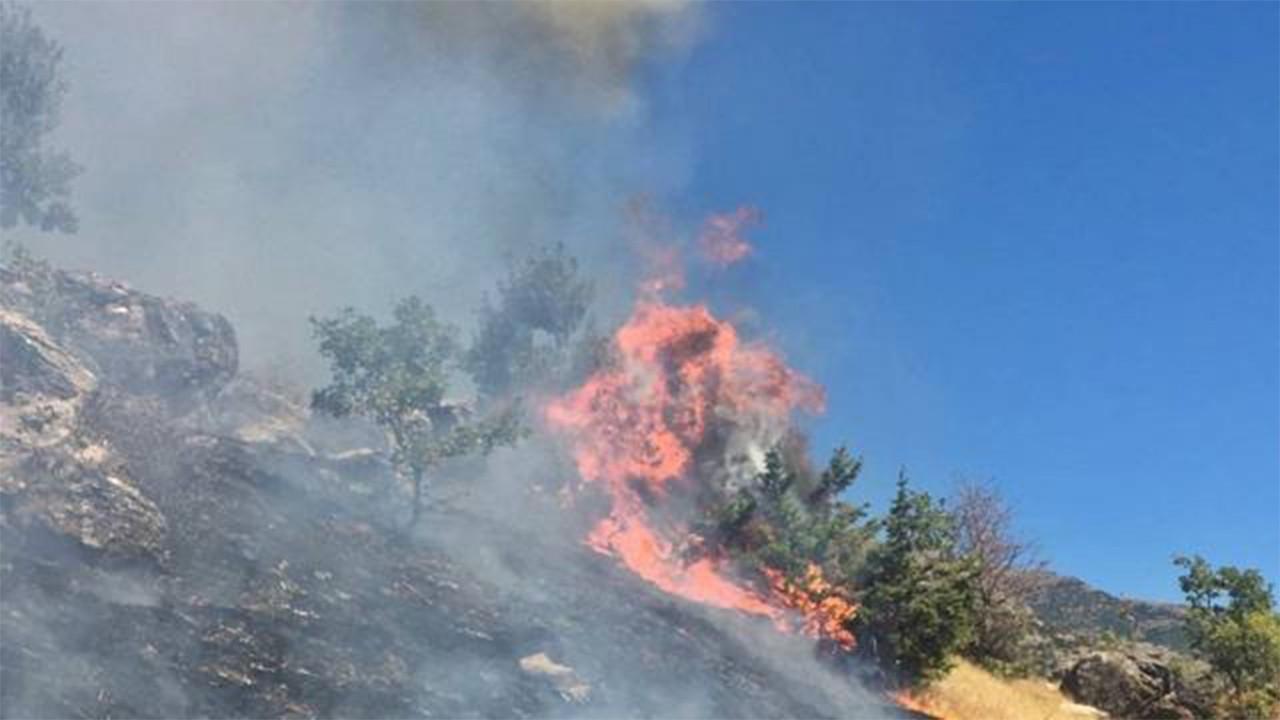 Tunceli'de çıkan örtü yangını söndürüldü
