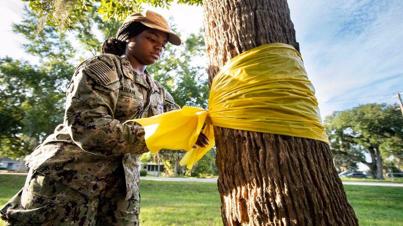 ABD ordusunda 2020'de 580 asker intihar etti