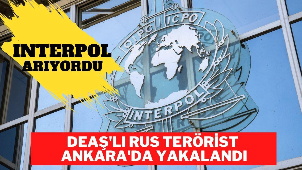 Interpol'ün aradığı DEAŞ'lı Rus terörist yakalandı