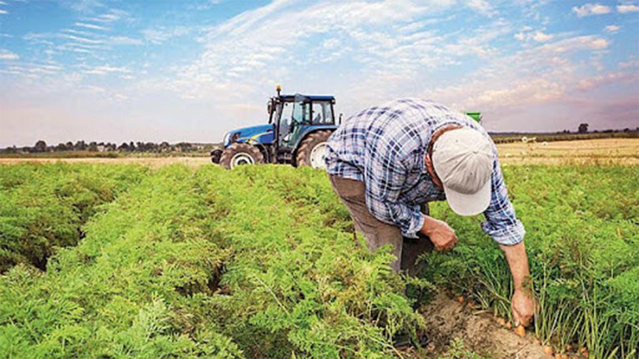 Çiftçilere destek ödemesi bugün yatırılacak