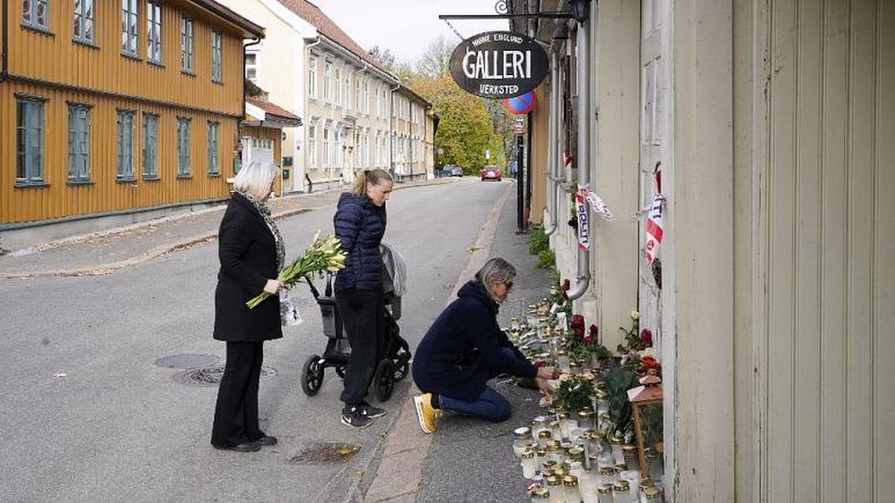 Norveç saldırısı ok ve yayla işlenmemiş
