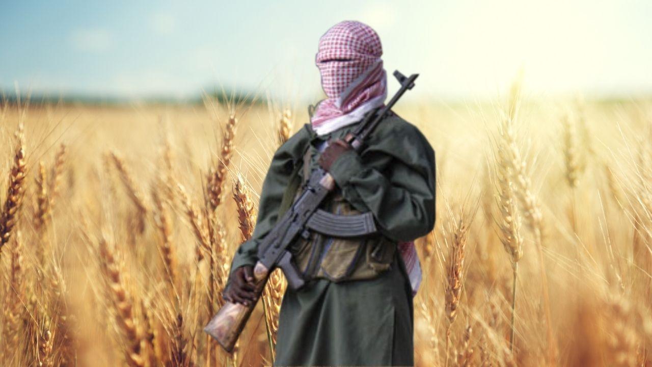 Taliban işçi maaşlarını buğdayla ödeyecek